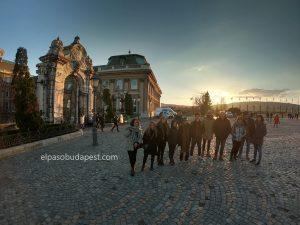 Hermosa foto del Free Tour de Budapest en la tarde del 2020 Febrero 20 Jueves tour de las 14:30 horas en el Castillo de Buda